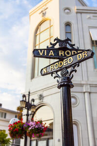 Rodeo Drive has long been a center of the fashion industry. With the latest resolution, it can continue to be a competitive force in the exotic leather industry.