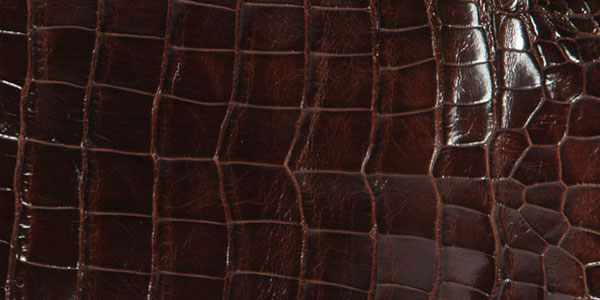 Alligator hide is soft, supple, and easy to work with, which explains why it is in such high demand with fashion houses.