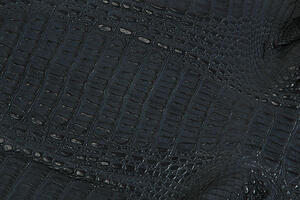 many designers prefer to work with hornback cuts because of the pronounced scale textures.