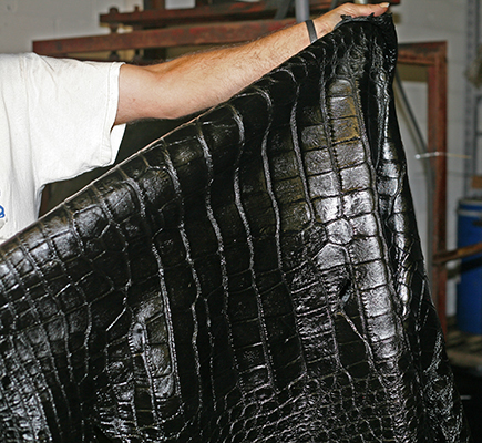 Alligator skin is very soft and supple, perfect for luxury items.