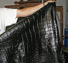 alligator skin leather