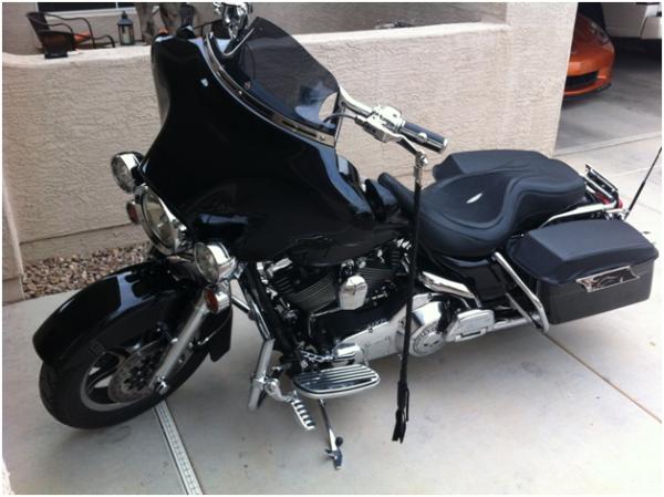 Stingray hide motorcycle seat