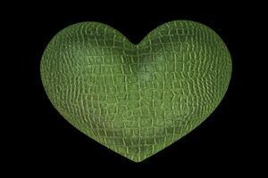 Fashion wear collectors love alligator skin handbags.