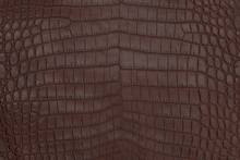 Crocodile skin is a luxurious and beautiful material for any high fashion project.