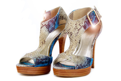 Python Skin Shoes