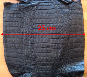 A caiman hide is measured at the widest point of the belly.
