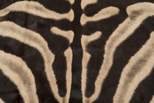Zebra skin has distinctive stripes, and has been a popular exotic leather for decades to make rugs and many other interior pieces.
