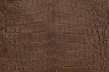 Use Nile crocodile skin on your next project as an alternative to Ameriacan alligator hide or for a tighter texture with better breaks in the skin.