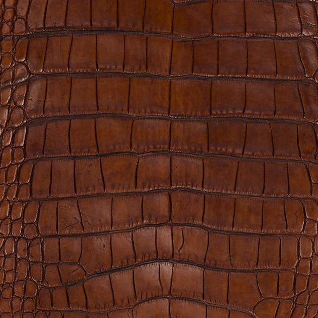 Alligator leather is a beautiful, but delicate, material for exotic leather goods.