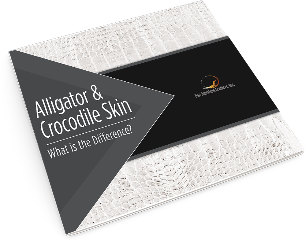 Alligator & Crocodile Skin: What is the Difference?