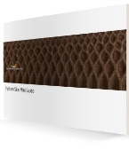 Python_Mini_Guide_3D_Cover-866775-edited