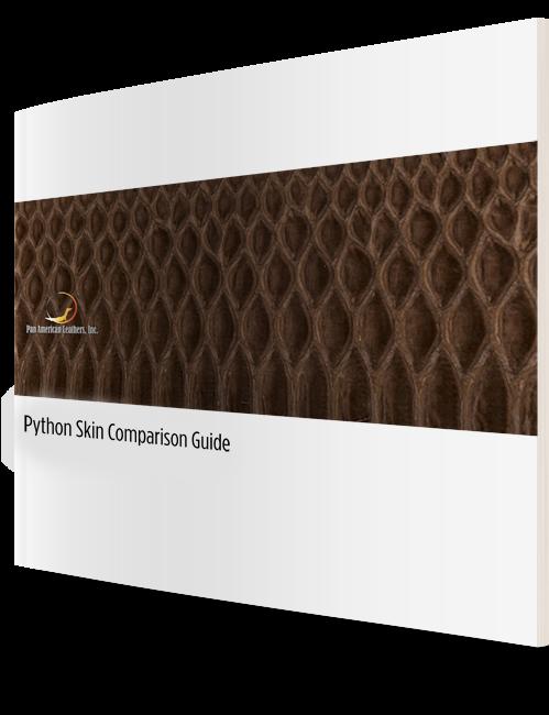 Python_Mini_Guide_3D_Cover
