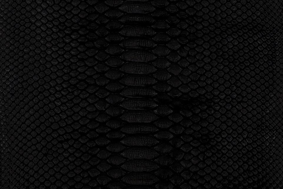 Python_black-2