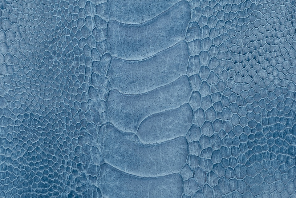 Ostrich leg skin has a distinctive set of scales down the middle, with smaller scale patterns surrounding it. This makes Ostrich Leg leather very easy to identify.